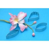 Sett - Cattleya Orchid mót image
