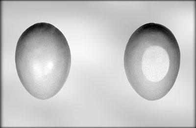 Plastmót - Páskaegg 14 cm image