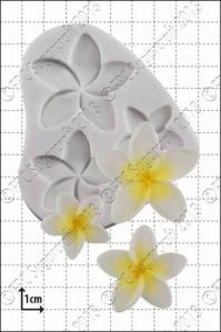 FPC silíkonmót - Frangipaniblóm image