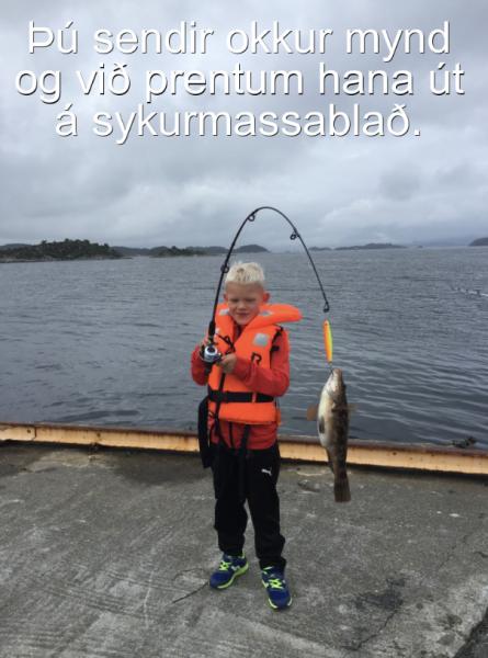 Sykurblað - Allt eftir þínu höfði ca. 30x40 cm. (ca.A3)