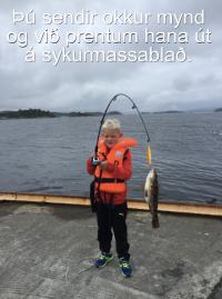 Sykurblað - Allt eftir þínu höfði ca. 30x40 cm. (ca.A3) image