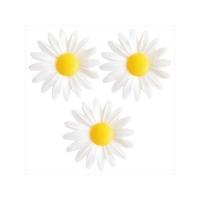 Oblátublóm - Daisy 4,5 cm - 6 stk. - Hvítar image